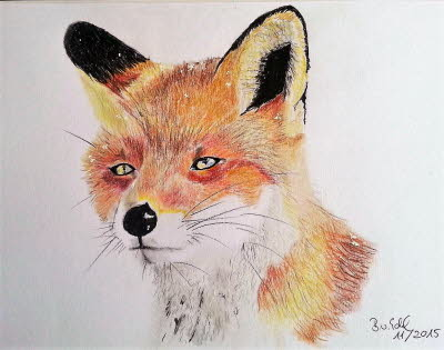 20151104_fuchs_buntstift